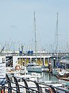First Find Your Boat Brighton Marina by Dorothy Berry-Lound