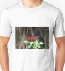 FLORIDA VICEORY BUTTERFLY T-Shirt