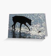 Doberman Silhouette Greeting Card