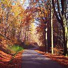 Way through the Autumn by JennyRainbow