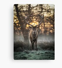 Love you Deer Canvas Print