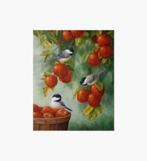 Bird Painting - Apple Harvest Chickadees Art Board