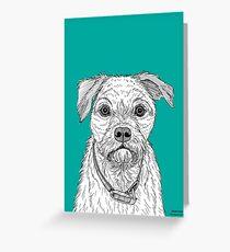 Border Terrier Portrait Greeting Card