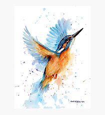 Kingfisher watercolour Photographic Print