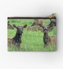 You Tell'm Sister, Those Paparazzi Just Make Me Sick! Studio Pouch