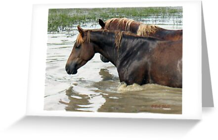 """""""Horses with Attitude no. 7, 'Race Ya Across the Pond, Joe. Loser Buys a Round!'""""... prints and products by © Bob Hall"""