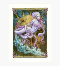 Mermaids of the Deep: Antarctic volcanic octopus Art Print