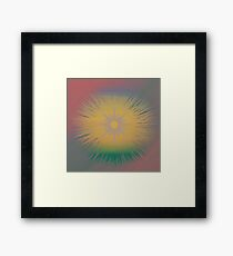 Pantone 2016 Sunset Star Framed Print