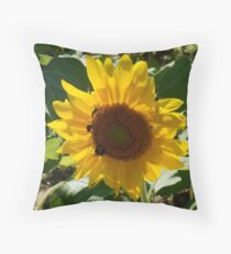 SOLITARY SUNFLOWER Throw Pillow