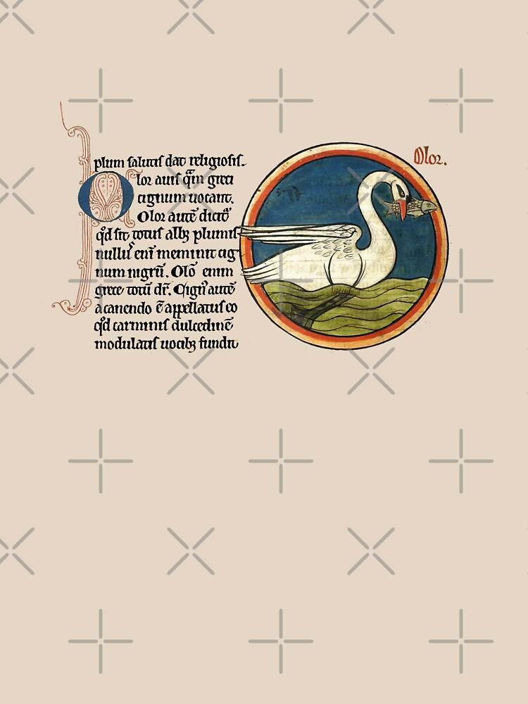 Medieval swan de interarte