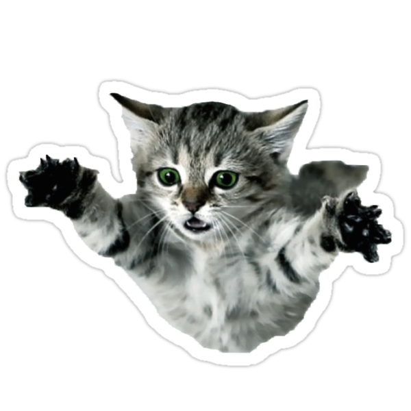 Quot Cat Quot Stickers By Hcpeck Redbubble