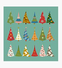 Christmas Trees Photographic Print