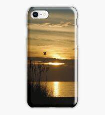 Seagull Sunset iPhone Case/Skin
