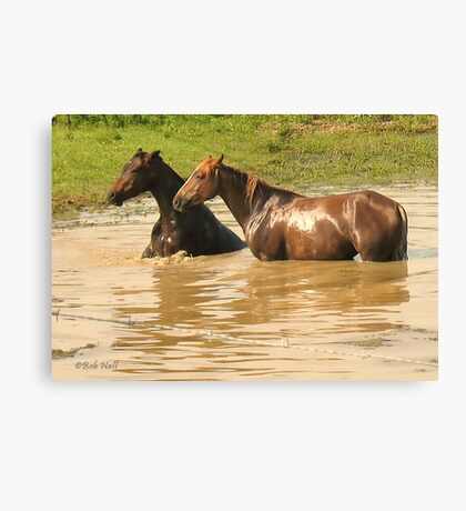 """Horses with Attitude no. 6,  'Yo, Stud, Ya Gettin' On My Last Nerve!'""... prints and products Canvas Print"