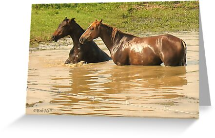 """""""Horses with Attitude no. 6,  'Yo, Stud, Ya Gettin' On My Last Nerve!'""""... prints and products by Bob Hall©"""