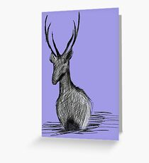 Deer in the water Greeting Card