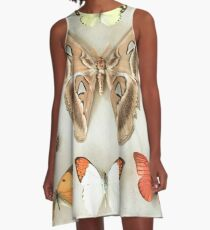 Butterflies and Moths A-Line Dress