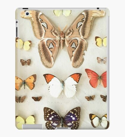 Butterflies and Moths iPad Case/Skin