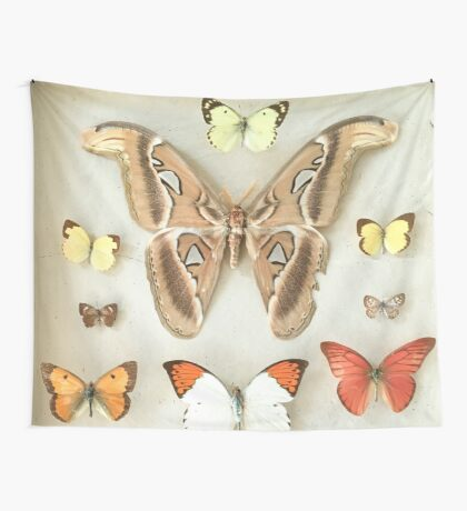 Butterflies and Moths Wall Tapestry