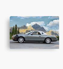 2004 Ford Thunderbird Landau Canvas Print