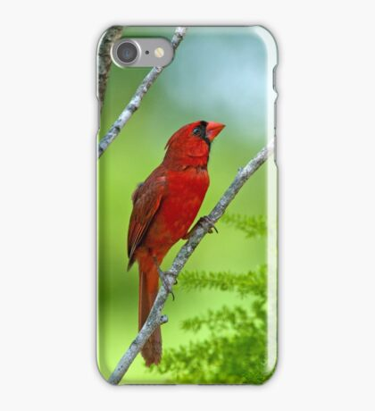 Precious Moment in May iPhone Case/Skin