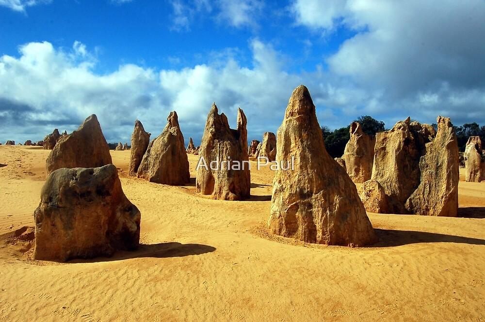 The Pinnacles, Nambung National Park, Western Australia by Adrian Paul