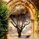 Seasons by Christine Lake