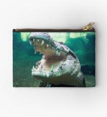 Rex, The 5 Metre Monster Crocodile Studio Pouch