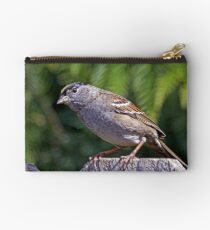 Golden-Crowned Sparrow  Studio Pouch