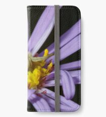 A Crab Spider (Misumena vatia) laying in wait on a Purple Aster flower for an unsuspecting bee or fly. iPhone Wallet/Case/Skin