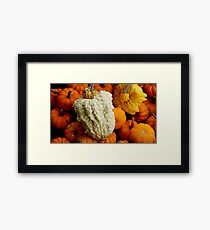 Love Me, Warts and All Framed Print