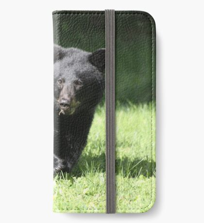 Boo Our Neighborhood Bear iPhone Wallet