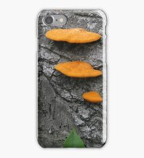 Shelf Fungus iPhone Case/Skin