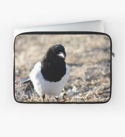 Black-billed Magpie Laptop Sleeve