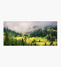 Sunny Valley Photographic Print