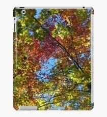 Canopy colour - 2013 iPad Case/Skin