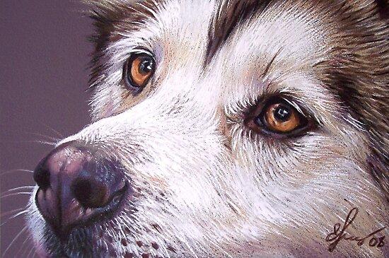 Siberian Husky by Elena Kolotusha
