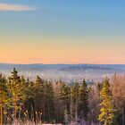 Frosty morning by Veikko  Suikkanen