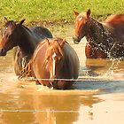 """""""Horses with Attitude no. 5, 'Hey, Youse Guys, I'm Still Talkin'""""... prints and products        by Bob Hall©"""