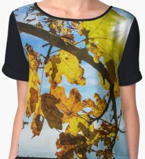 Sun light through the yellow oak leaves, fall season Women's Chiffon Top