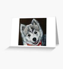 Oreo the Pomsky  Greeting Card