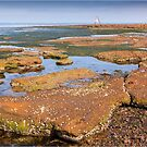 Low Tide - Rickett's Point by Greg Earl
