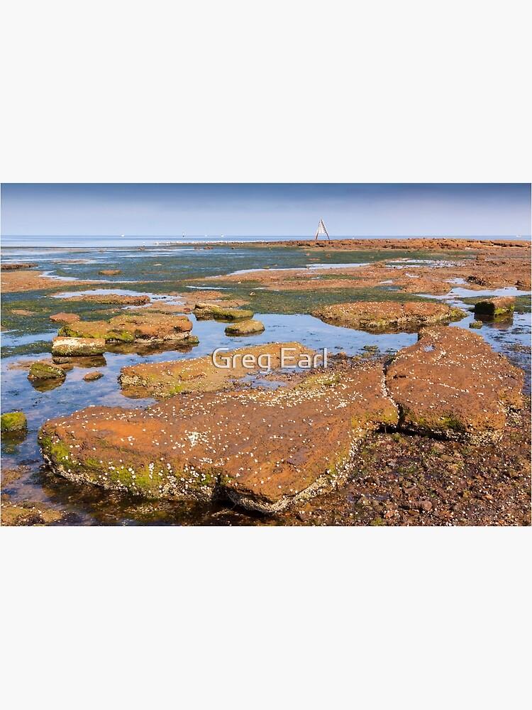 Low Tide - Rickett's Point by GregEarl