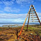 Navigational Marker - Rickett's Point by Greg Earl
