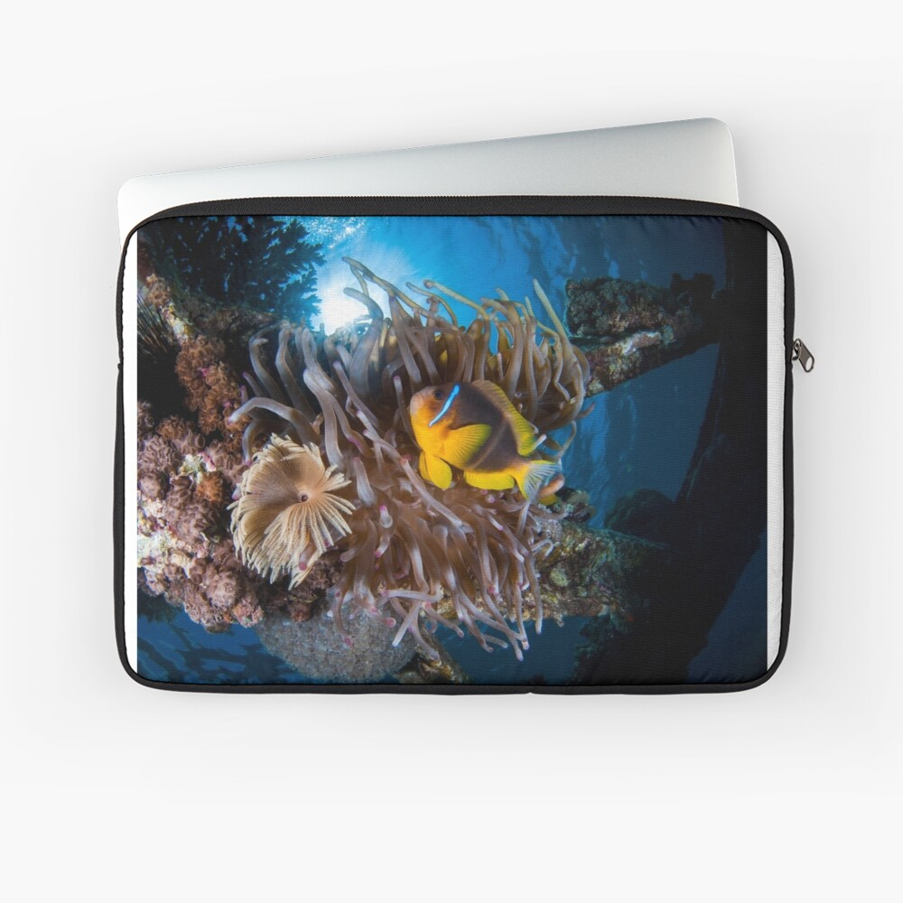 Under water photography of a Red Sea Laptop Sleeve