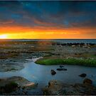 Ricketts Point Sunset by Greg Earl