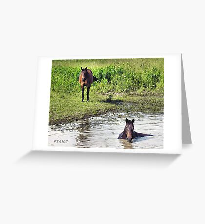 """""""LOOKING AT ME, LOOKING AT YOU""""... prints and products Greeting Card"""