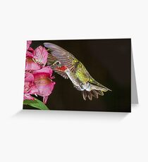 Look! No Hands! Greeting Card