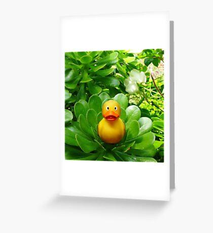Felix - Green Greeting Card