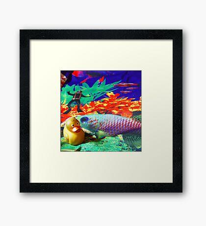 Felix - Sea Framed Print